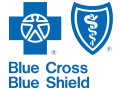 small blue cross blue shield logo
